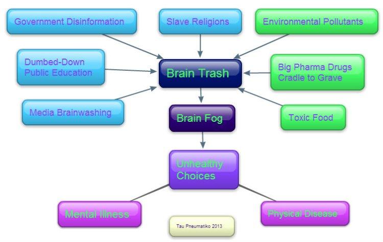 Brain Trash Final